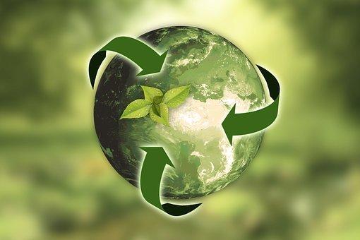 Nature, Earth, Sustainability, Leaf